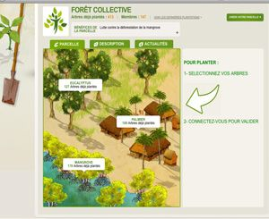 parcelle reforestaction